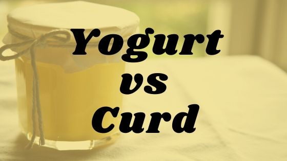 Yogurt vs Curd