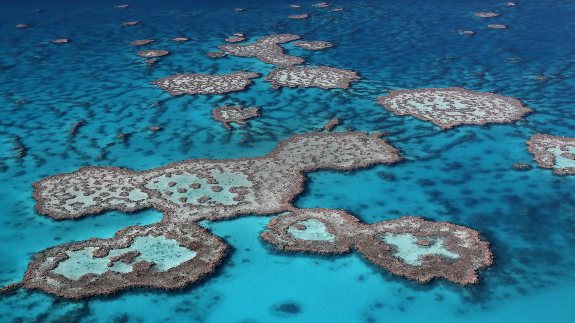 Aerial view of the Great Barrier Reef near Queensland, Australia
