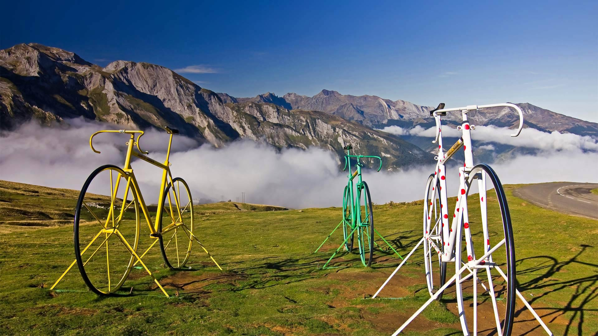 the tour de france bicycle race