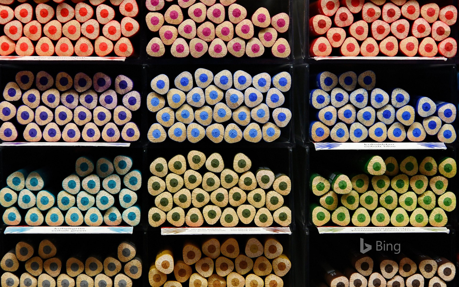 Education : Pencils At the ready!